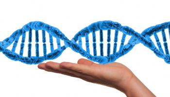 DNA testing Wellness Traits